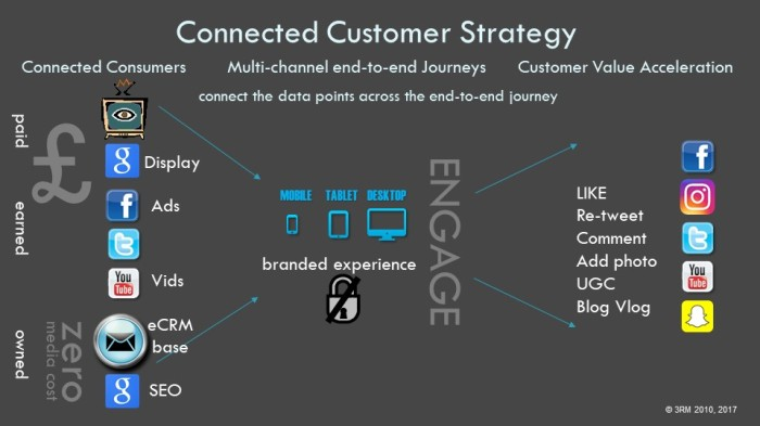 Connected Customer Strategy chart - v2